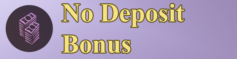 No Deposit Bonus: Casino Bonus Guide header